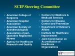 scip steering committee
