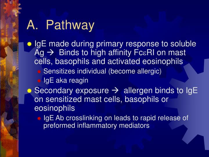 A.  Pathway