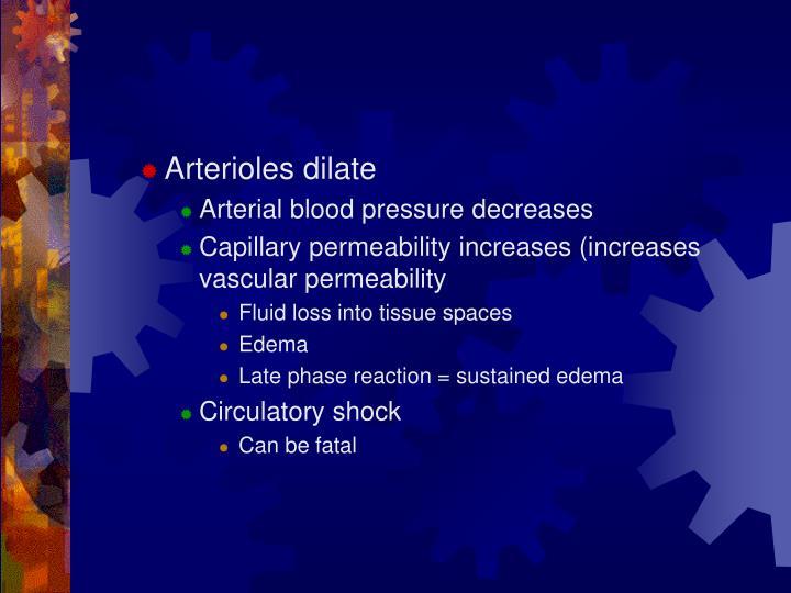 Arterioles dilate