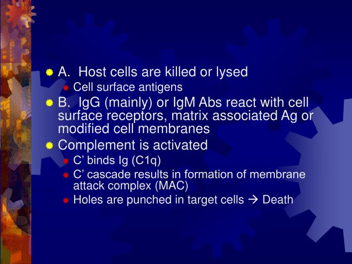 A.  Host cells are killed or lysed