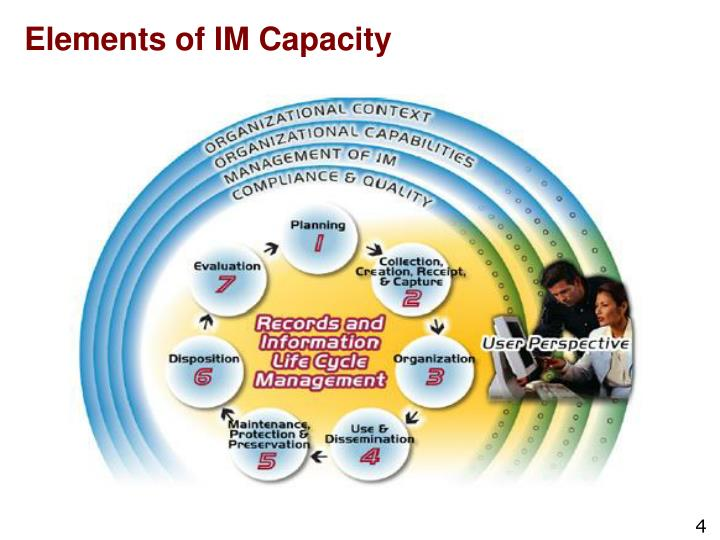 Elements of IM Capacity