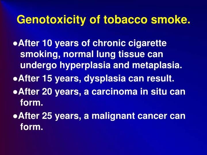 Genotoxicity of tobacco smoke.
