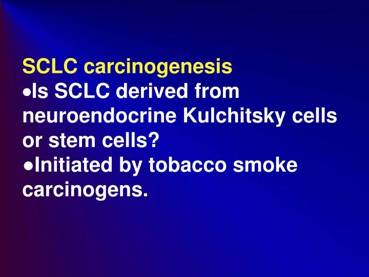 SCLC carcinogenesis