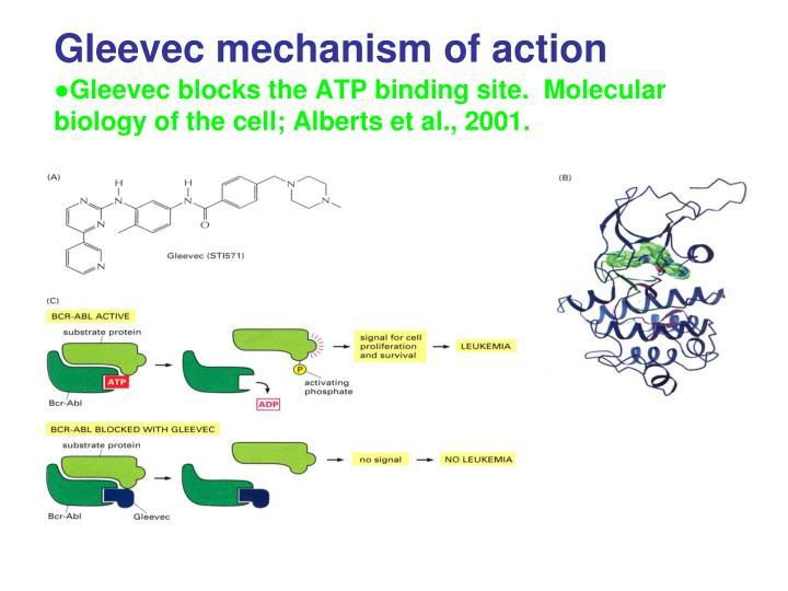 Gleevec mechanism of action