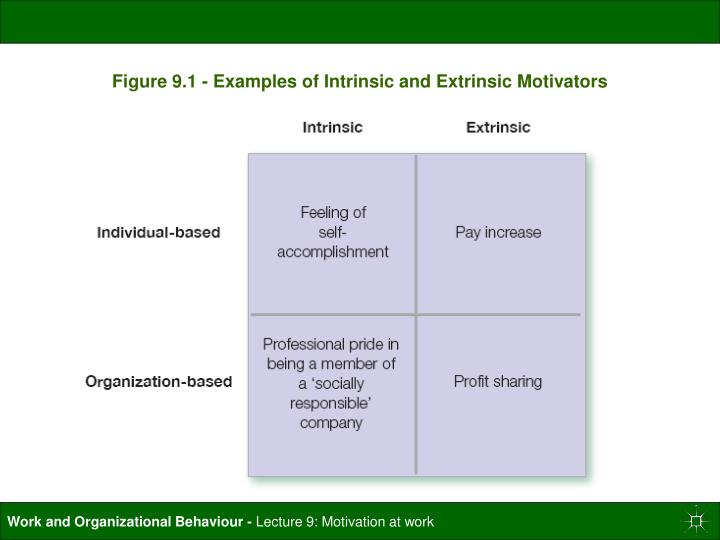 Figure 9.1 - Examples of Intrinsic and Extrinsic Motivators