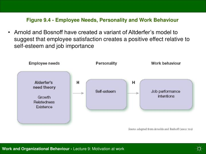Figure 9.4 - Employee Needs, Personality and Work Behaviour