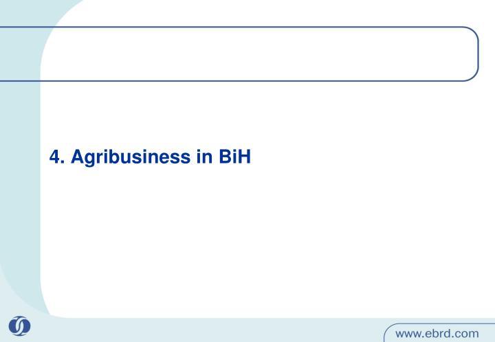 4. Agribusiness in BiH