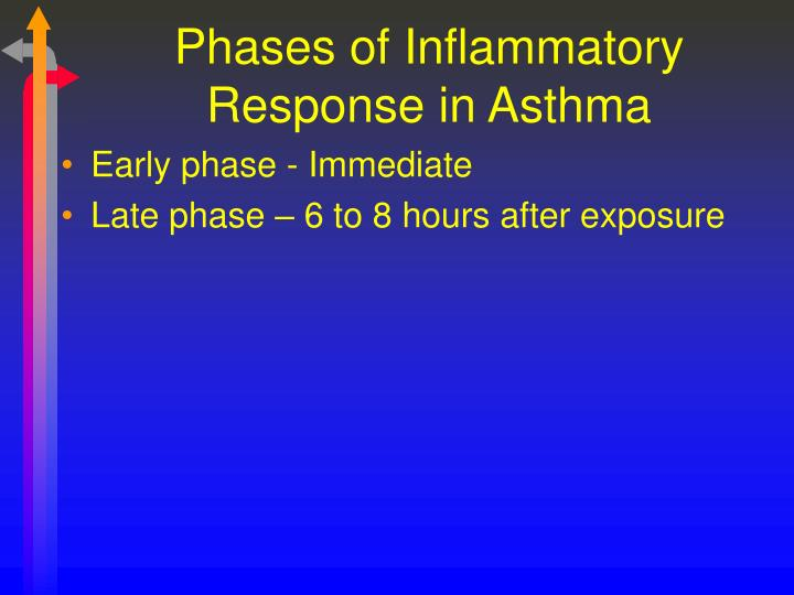 Phases of Inflammatory Response in Asthma