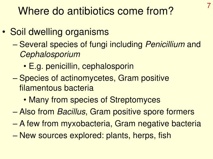 Where do antibiotics come from?