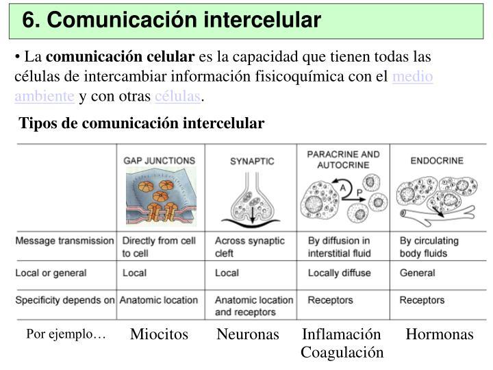 6. Comunicación intercelular