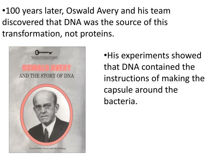 100 years later, Oswald Avery and his team discovered that DNA was the source of this transformation, not proteins.