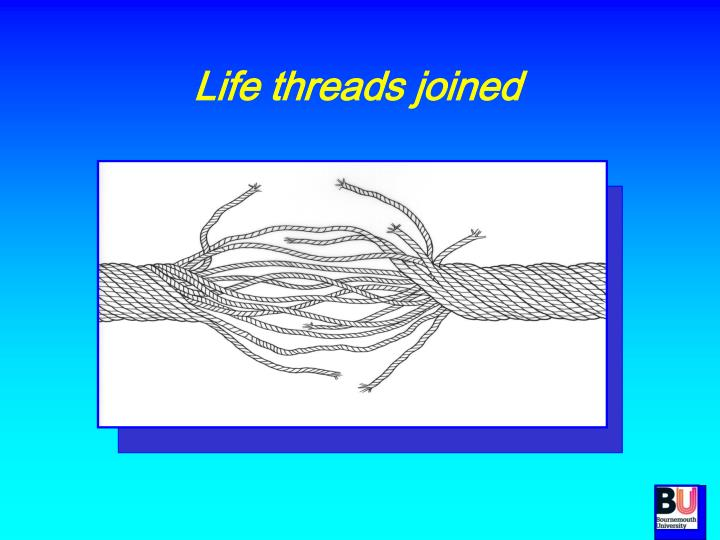 Life threads joined