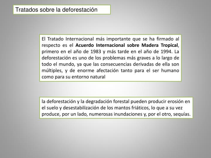 Tratados sobre la deforestación