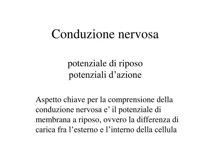 Conduzione nervosa