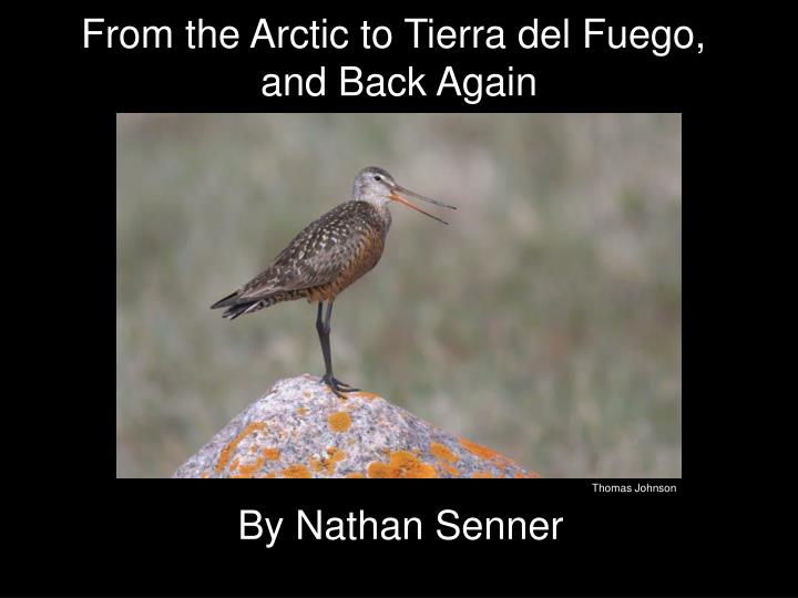 From the Arctic to Tierra del Fuego,