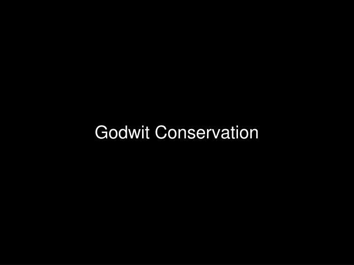 Godwit Conservation