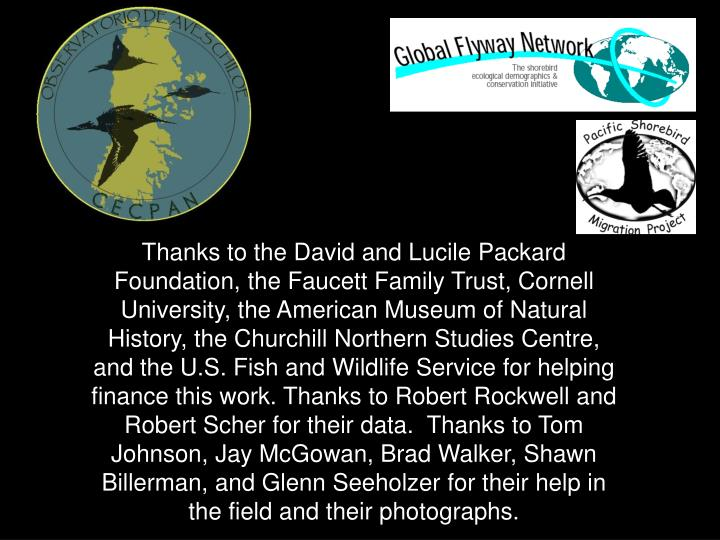Thanks to the David and Lucile Packard Foundation, the Faucett Family Trust, Cornell University, the American Museum of Natural History, the Churchill Northern Studies Centre, and the U.S. Fish and Wildlife Service for helping finance this work. Thanks to Robert Rockwell and Robert Scher for their data.  Thanks to Tom Johnson, Jay McGowan, Brad Walker, Shawn Billerman, and Glenn Seeholzer for their help in the field and their photographs.