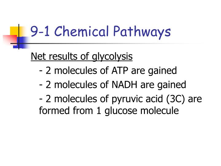 9-1 Chemical Pathways