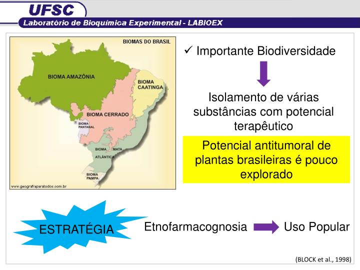 Importante Biodiversidade