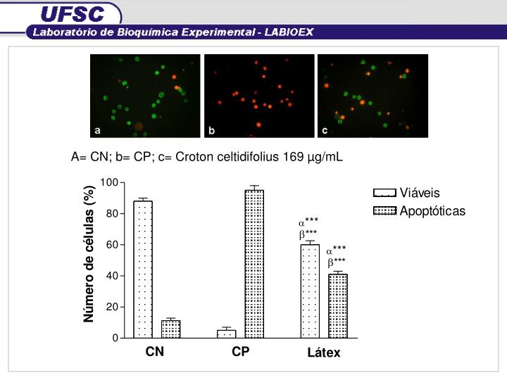A= CN; b= CP; c= Croton celtidifolius 169 µg/mL