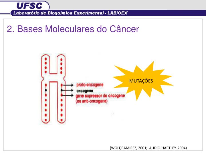 2. Bases Moleculares do Câncer