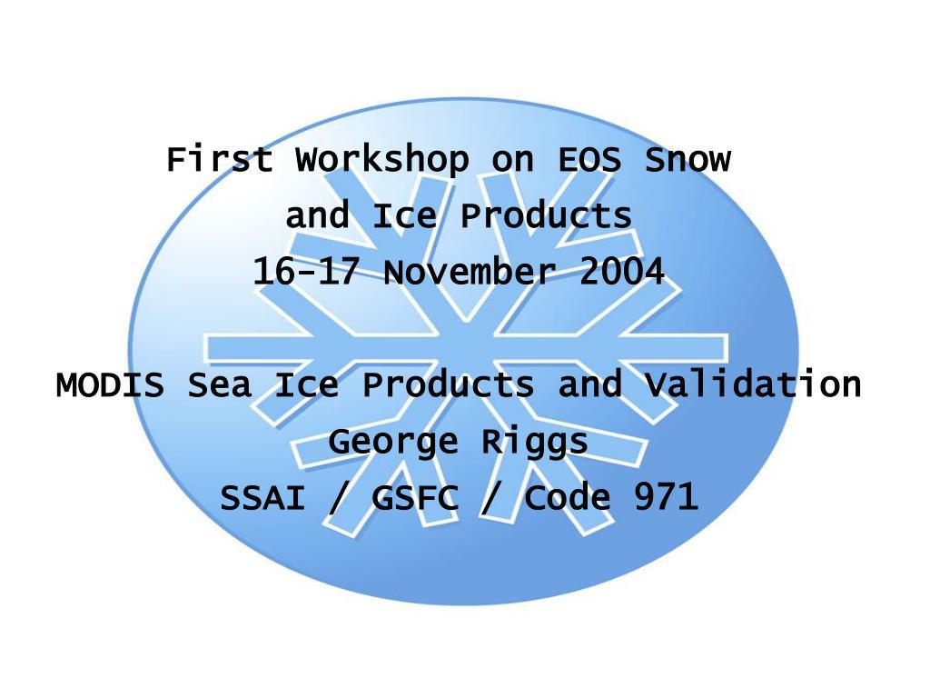 First Workshop on EOS Snow