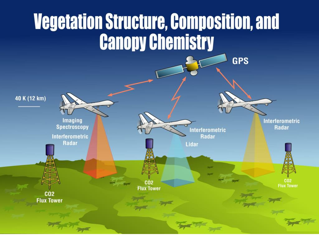 Vegetation Structure, Composition, and Canopy Chemistry, cont'd