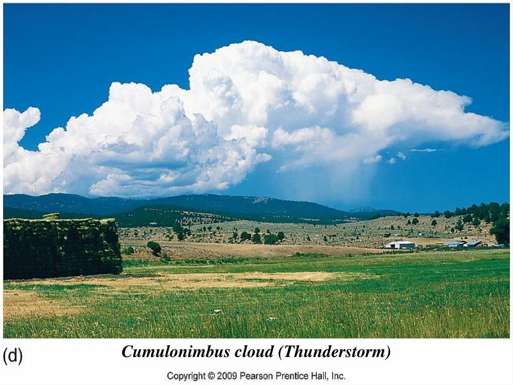 Cumulonimbus cloud (Thunderstorm)