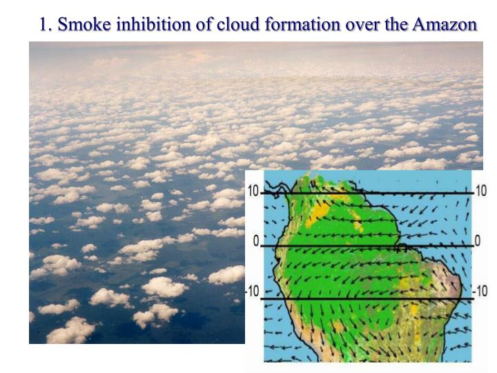 1. Smoke inhibition of cloud formation over the Amazon