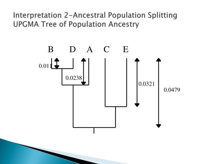Interpretation 2-Ancestral Population Splitting