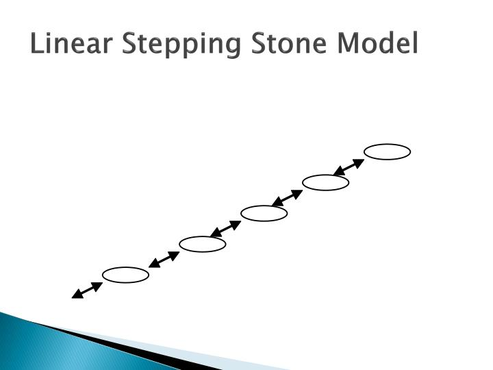 Linear Stepping Stone Model