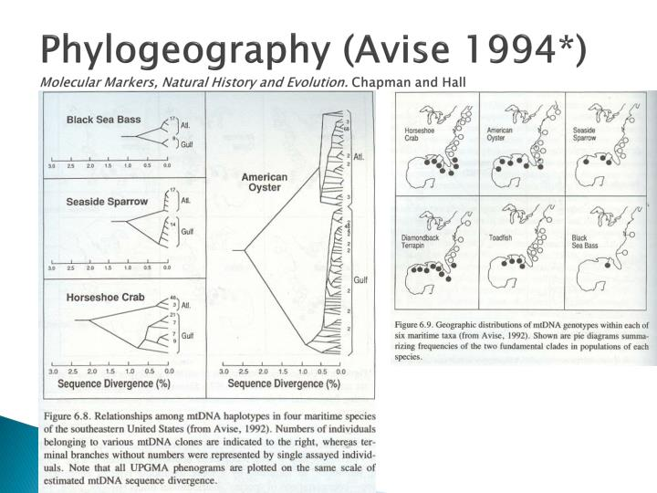 Phylogeography avise 1994 molecular markers natural history and evolution chapman and hall