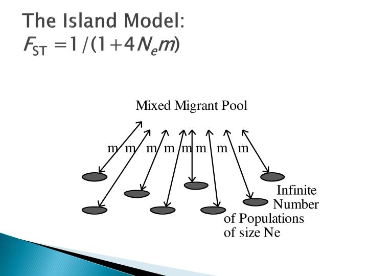 The Island Model:
