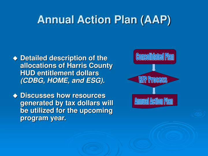 Annual Action Plan (AAP)