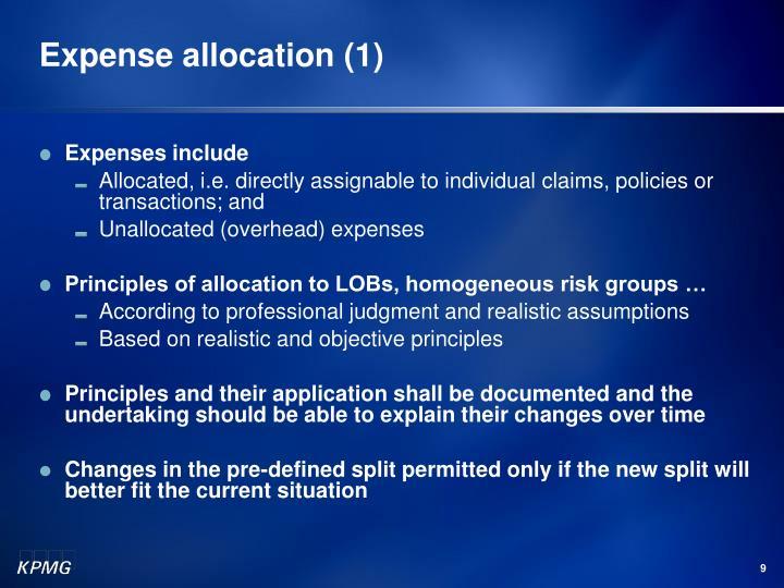 Expense allocation (1)