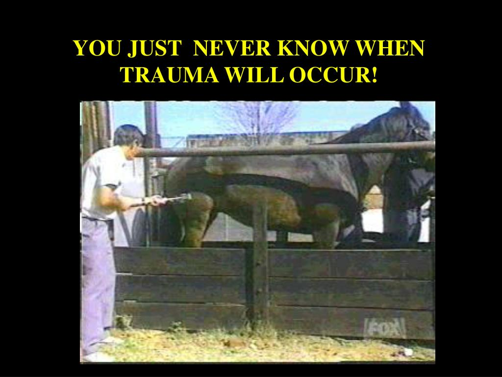 YOU JUST  NEVER KNOW WHEN TRAUMA WILL OCCUR!