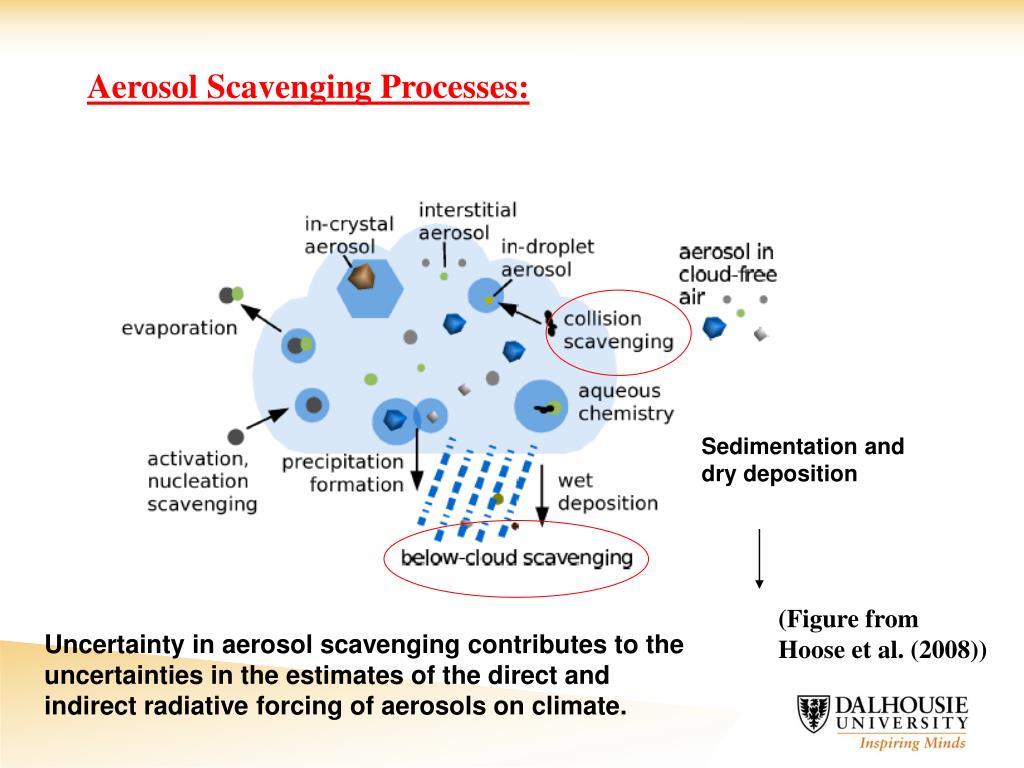 Aerosol Scavenging Processes: