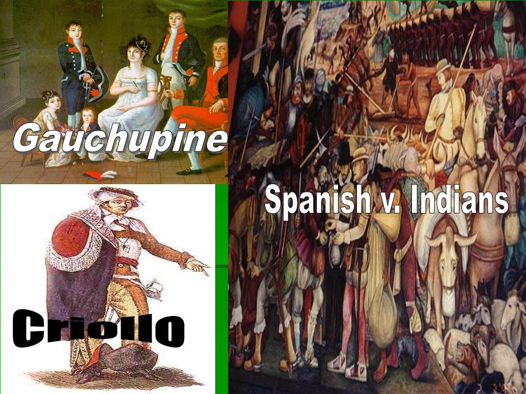 Gauchupine