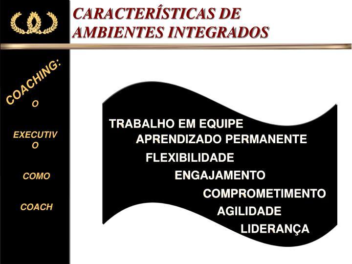 CARACTERÍSTICAS DE AMBIENTES INTEGRADOS