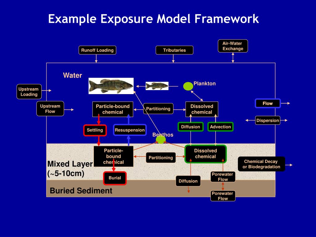 Example Exposure Model Framework