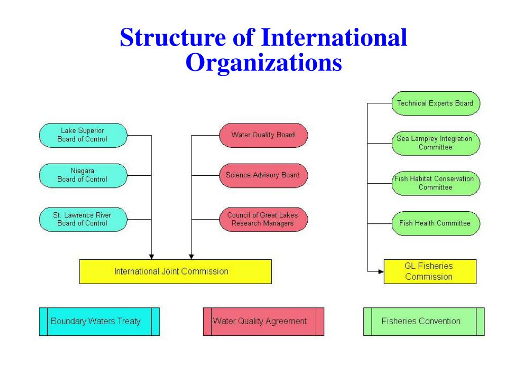 Structure of International Organizations