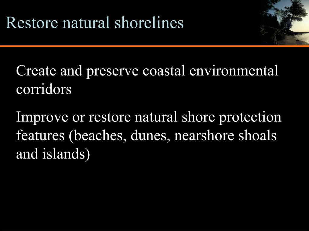 Restore natural shorelines