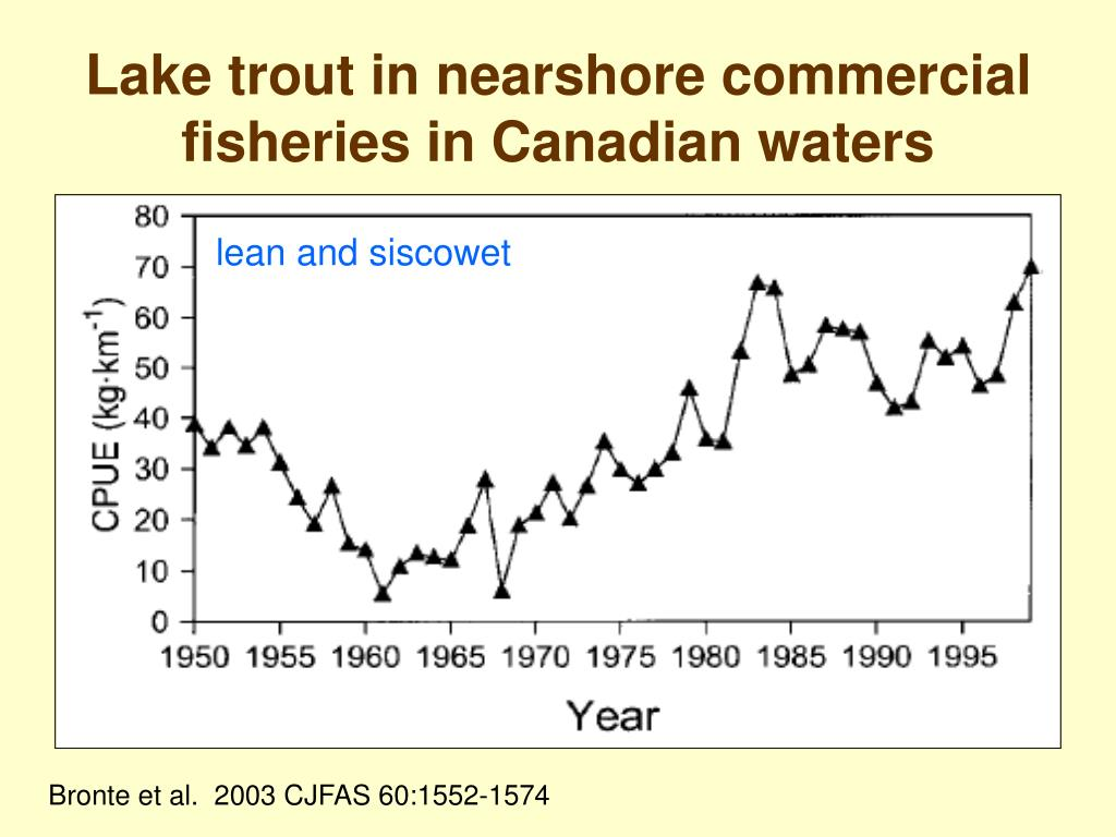 Lake trout in nearshore commercial fisheries in Canadian waters