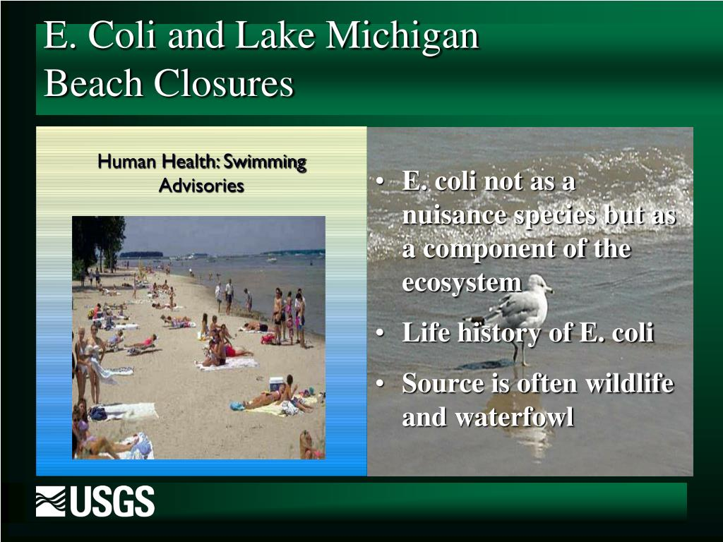 Human Health: Swimming Advisories