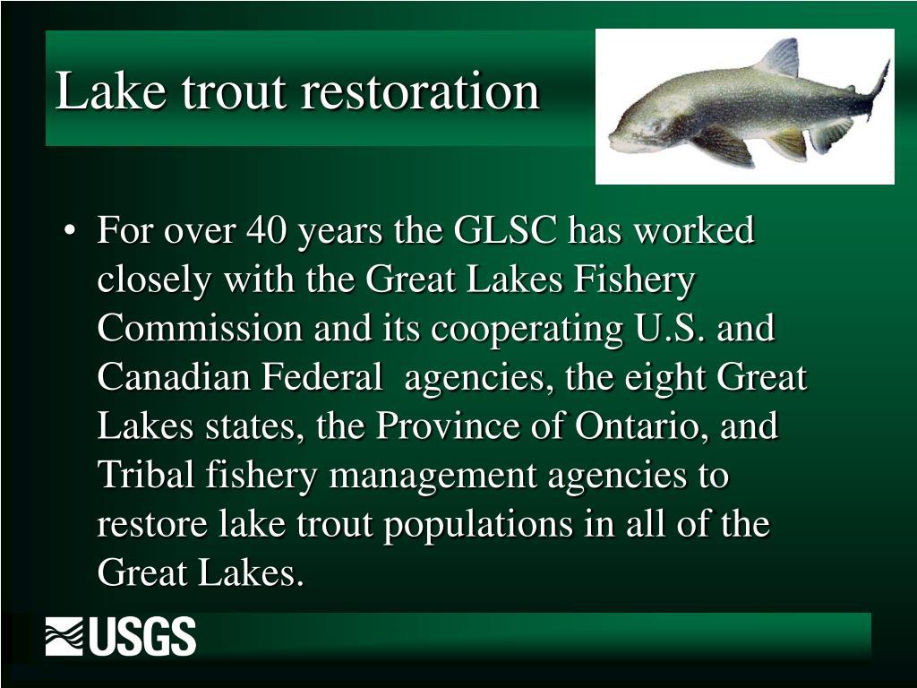 Lake trout restoration