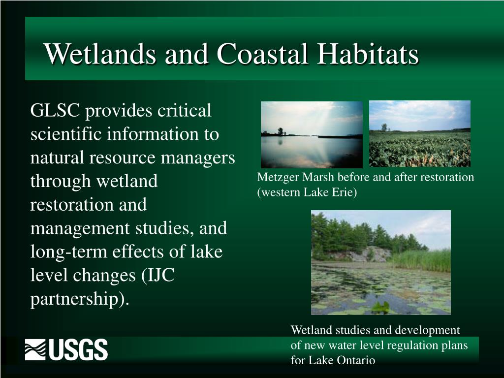 Wetlands and Coastal Habitats