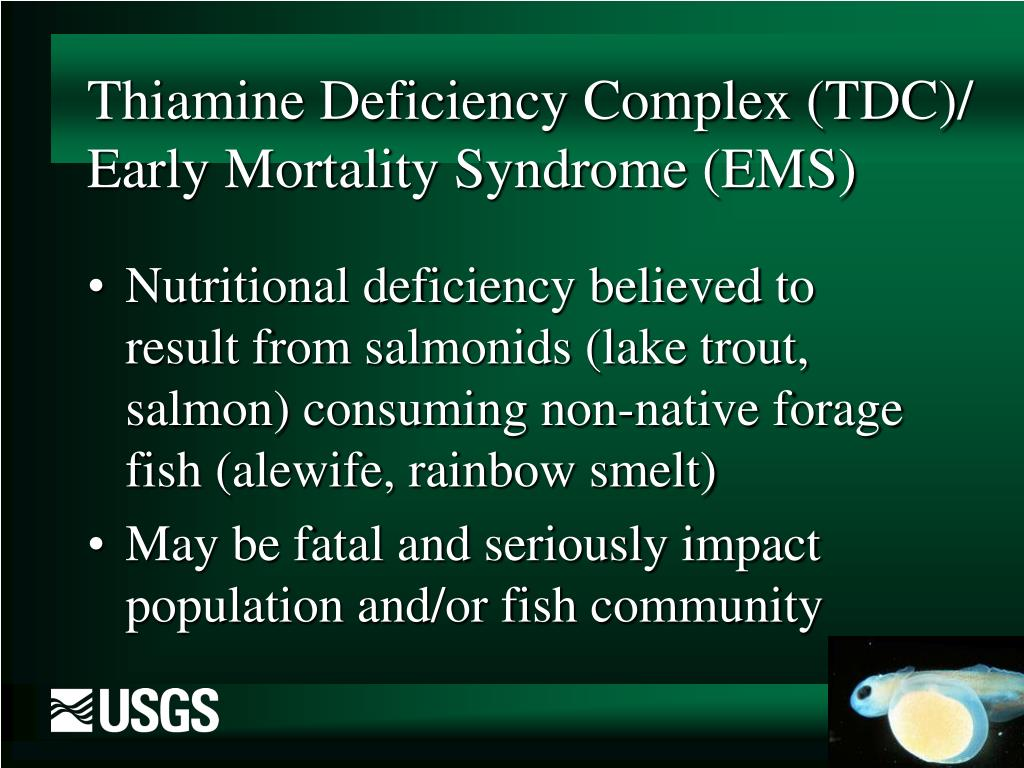 Thiamine Deficiency Complex (TDC)/