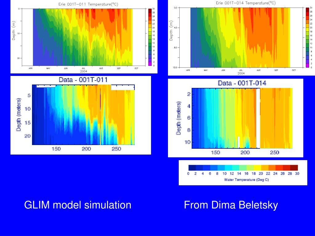GLIM model simulation                  From Dima Beletsky