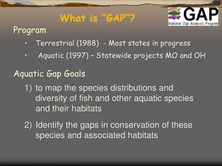 "What is ""GAP""?"