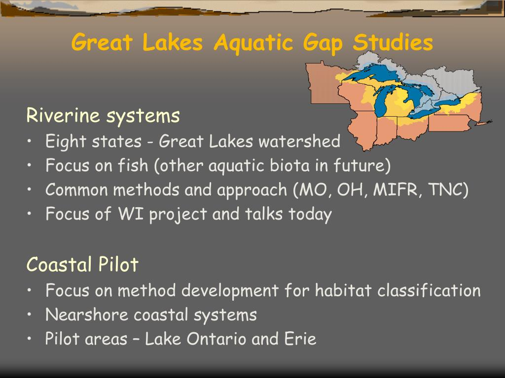 Great Lakes Aquatic Gap Studies